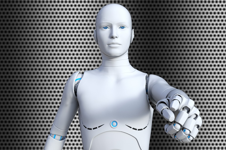 Domestic Robots Soon In Homes